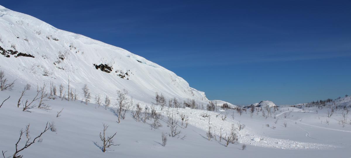 Forby skigåing på fjellet – nå!